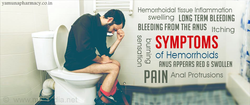 ayurveda treatment for hemorrhoids or piles yamuna pharmacy medium
