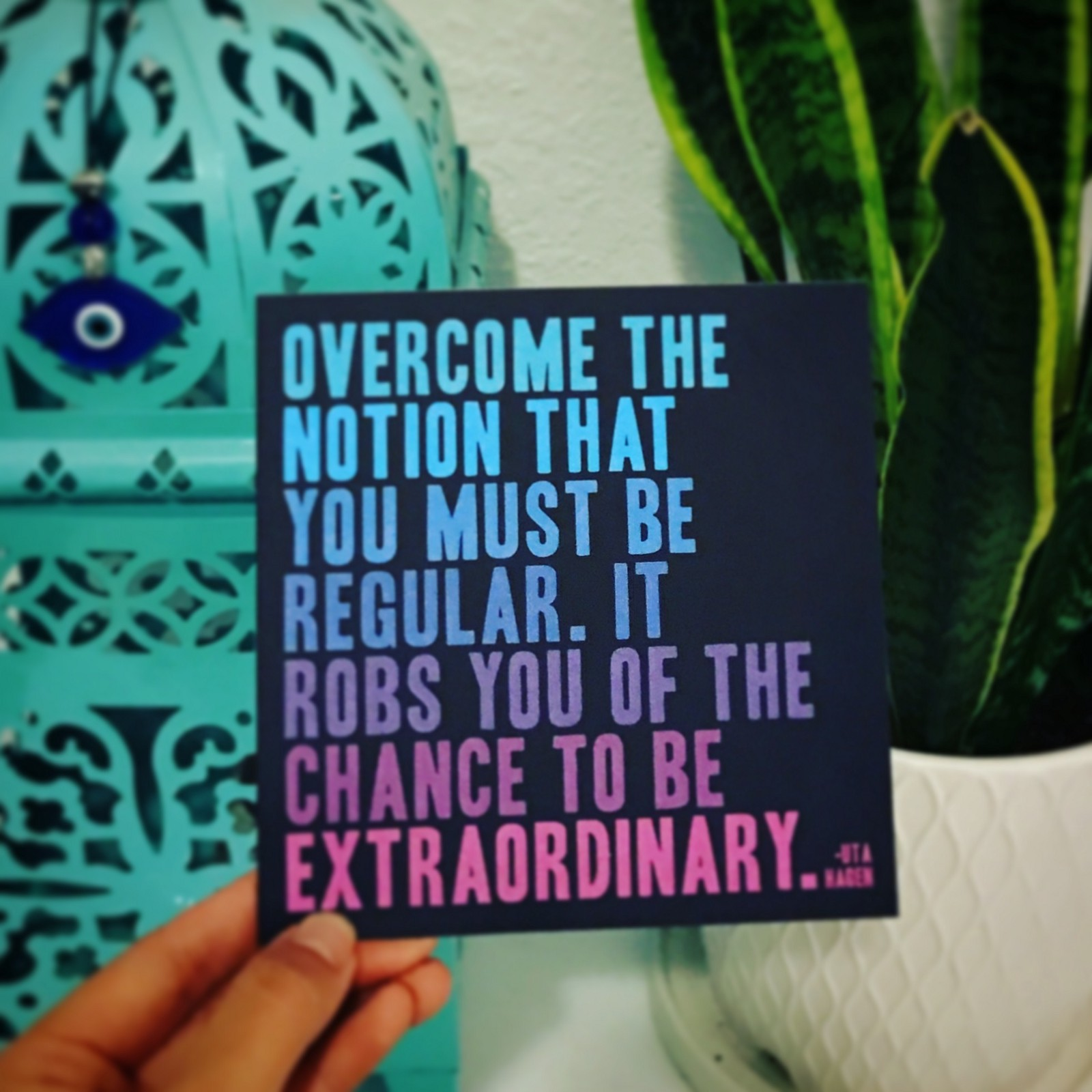 100 Days of Finding the Extraordinary in the Ordinary