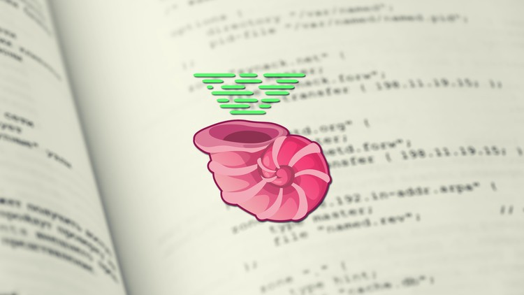 how to find shell type in unix