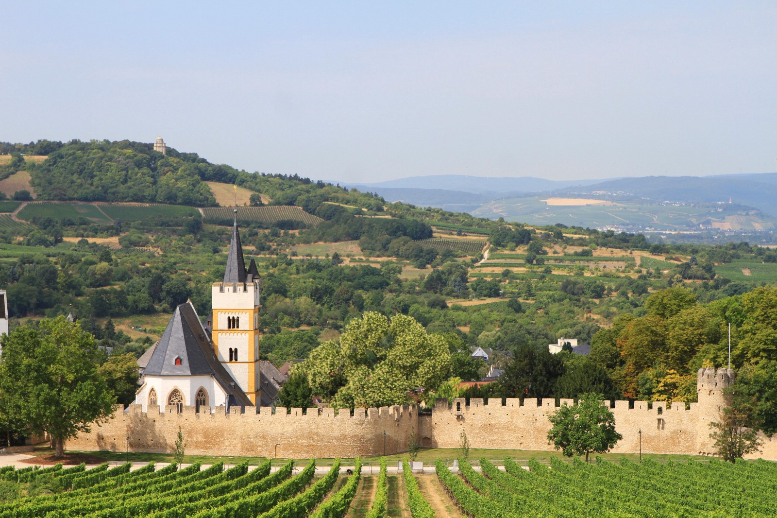 ingelheim and bingen a local s tour of german wine country. Black Bedroom Furniture Sets. Home Design Ideas
