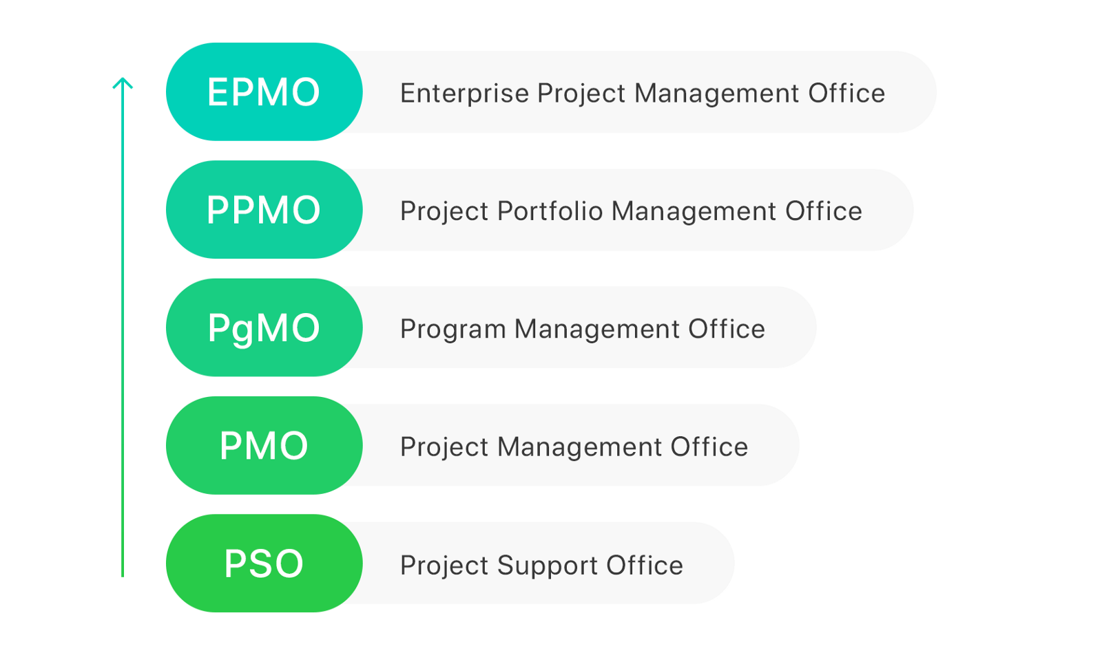 What Is Pmo Epmo Ppmo Pgmo And Pso Paymo Medium