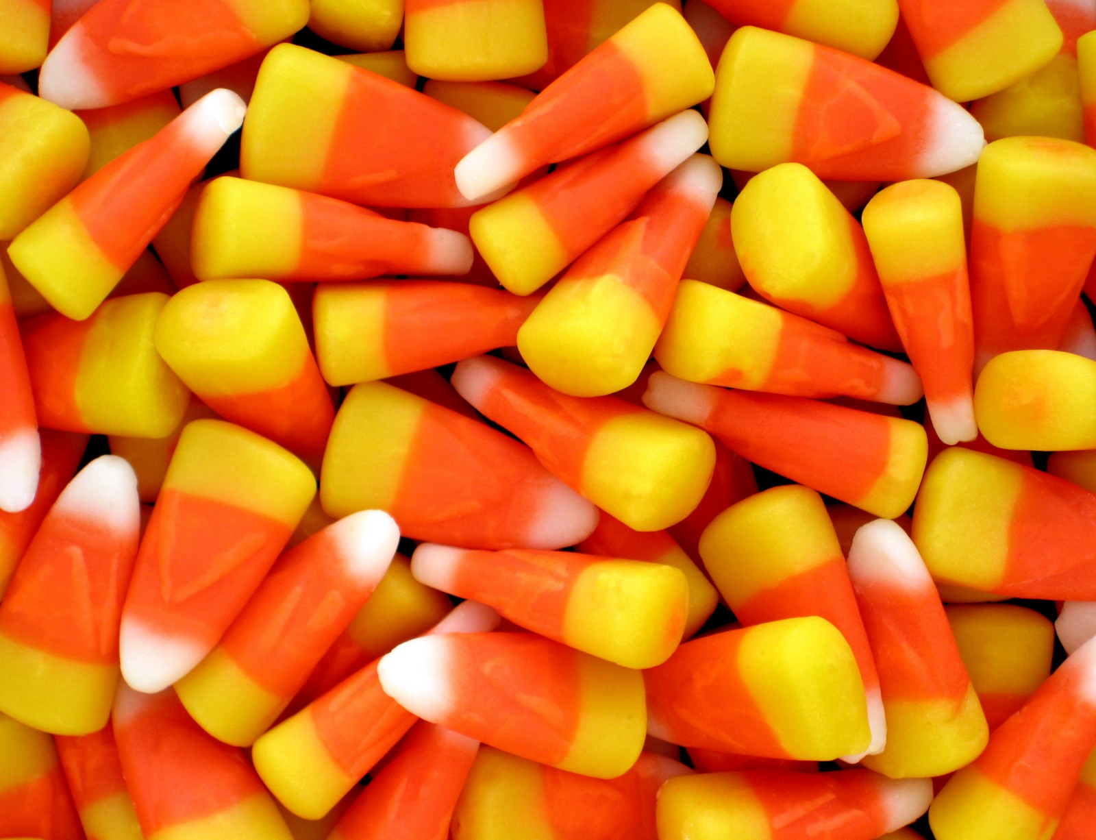 this halloween, check out these 12 ethically sourced candies