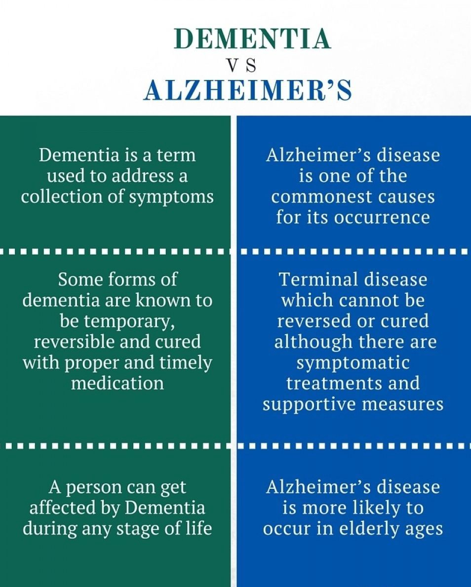 Apartment Vs Condo: What Is The Difference Between Alzheimer's And Dementia?