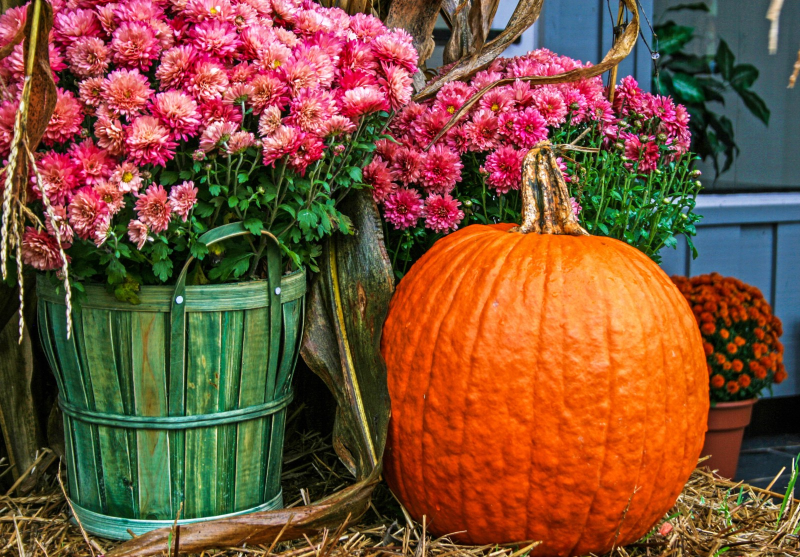 do something more fall festivals halloween events taking place this weekend