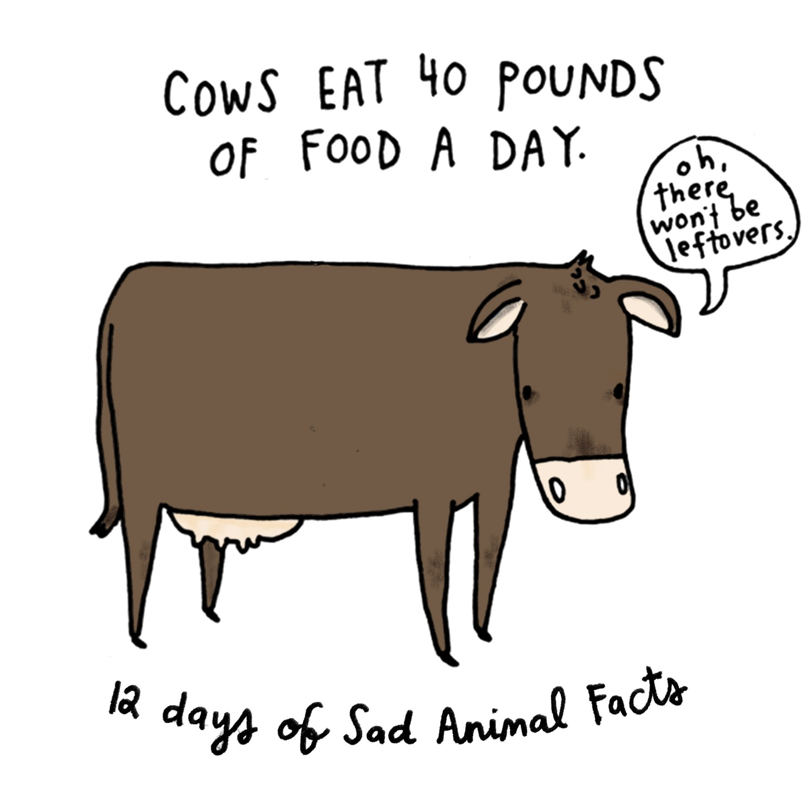 12 Days of Christmas, Presented by 12 Sad Animals. – Brooke Barker ...