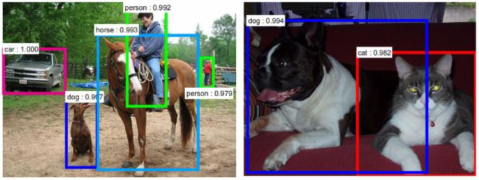 Dog Vs Cat Dataset Image Recognition