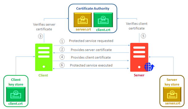 Implementing Mutual SSL Authentication – CloudBoost