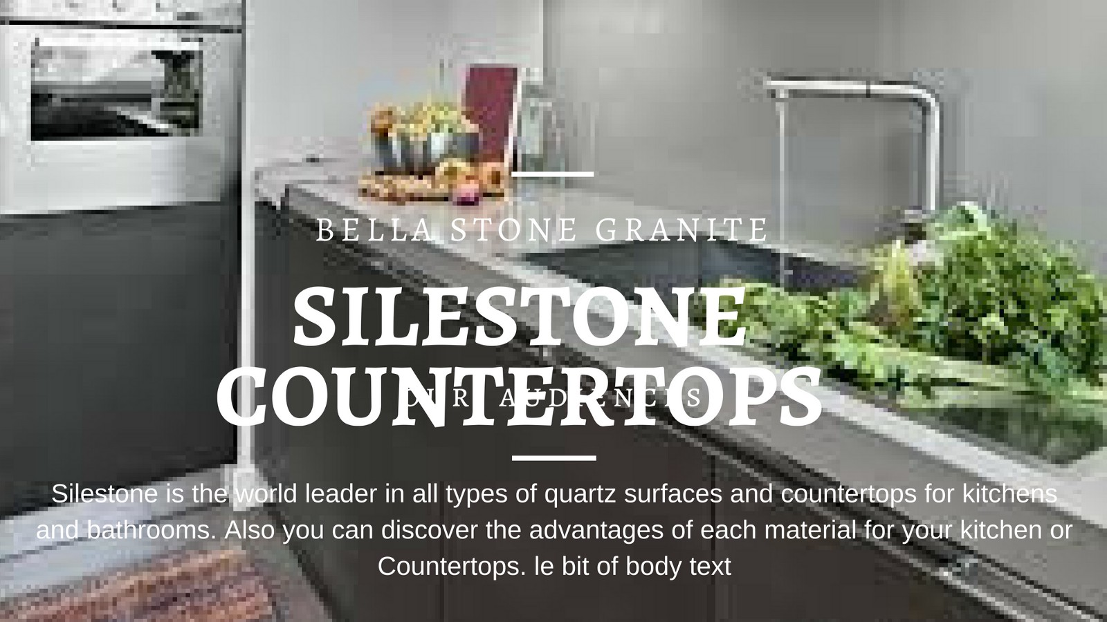 Silestone Countertops – Kathy T – Medium