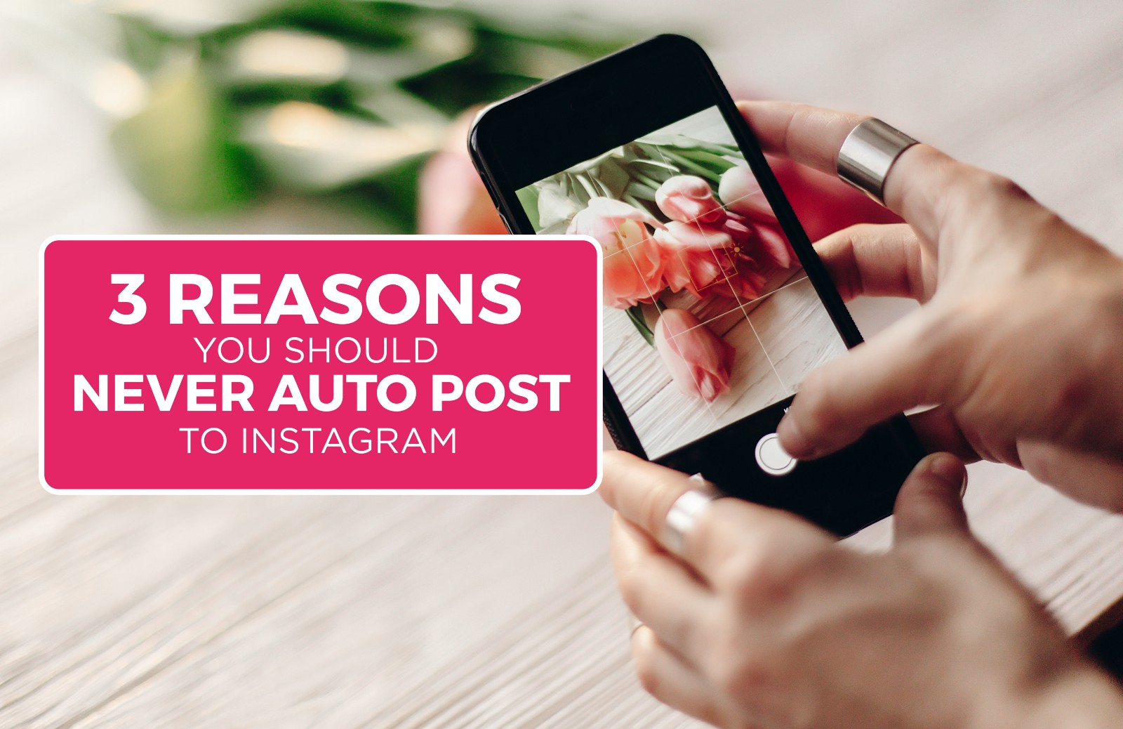 3 Reasons You Should Never Auto-post to Instagram