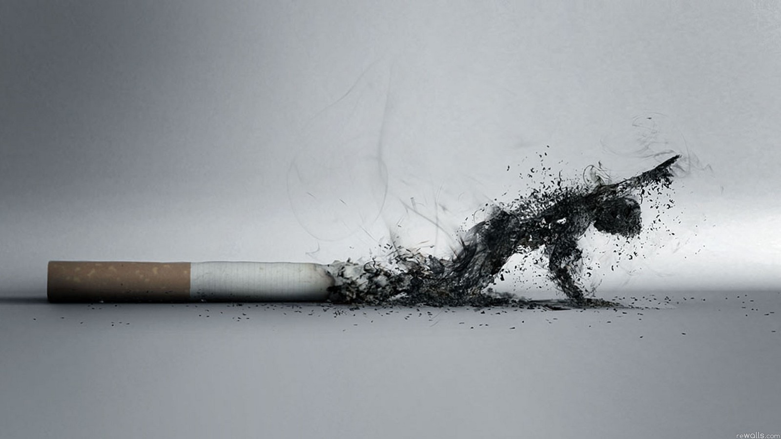 Cigarette Smoking Kills
