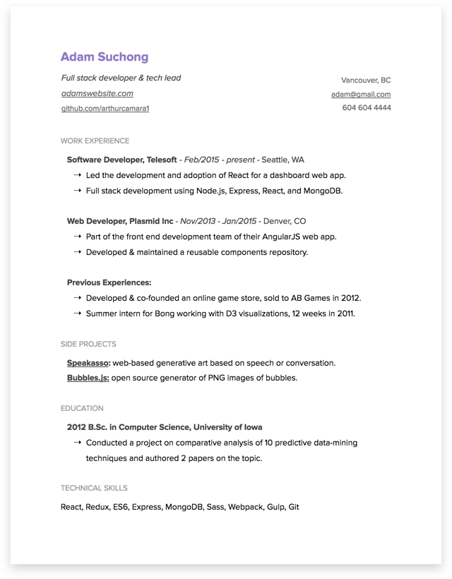 bonus 2 simple resume template on google docs - Software Developer Resume