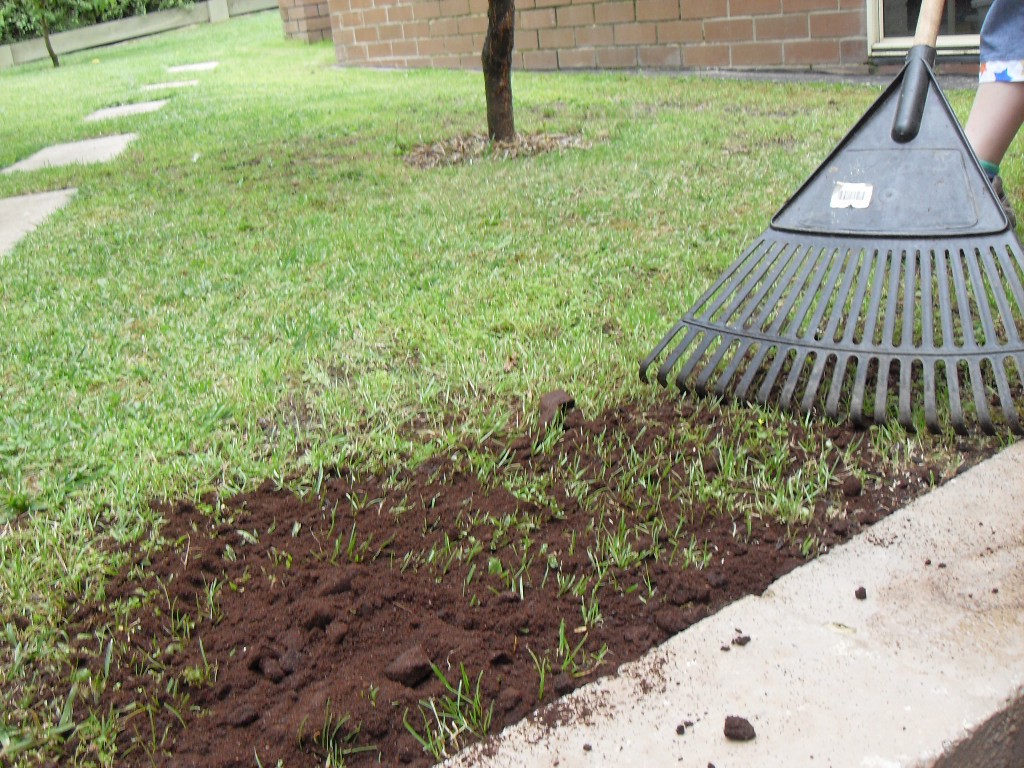 9 Ways To Mosquito Proof Your Yard For Summer Drdrainage Medium
