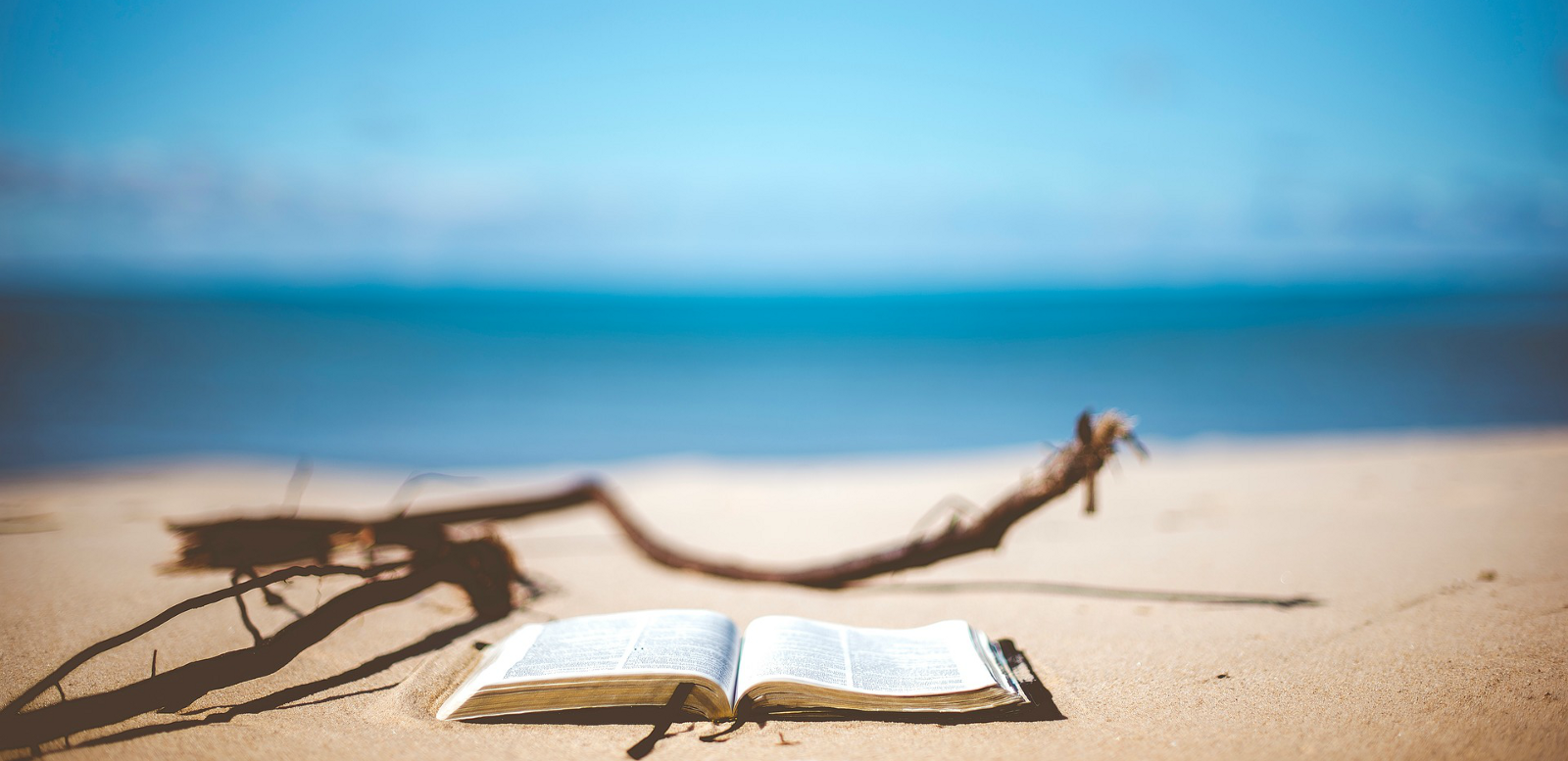 Where Are All The Asian Beach Reads? – Plan A Magazine