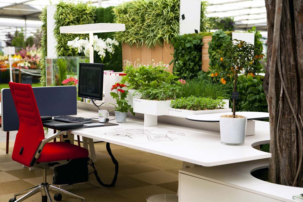 interesting office spaces design the client wishes to see attractive and interesting office in this case it is necessary create the atmosphere for new visitor attention what has be an office space betty moore medium