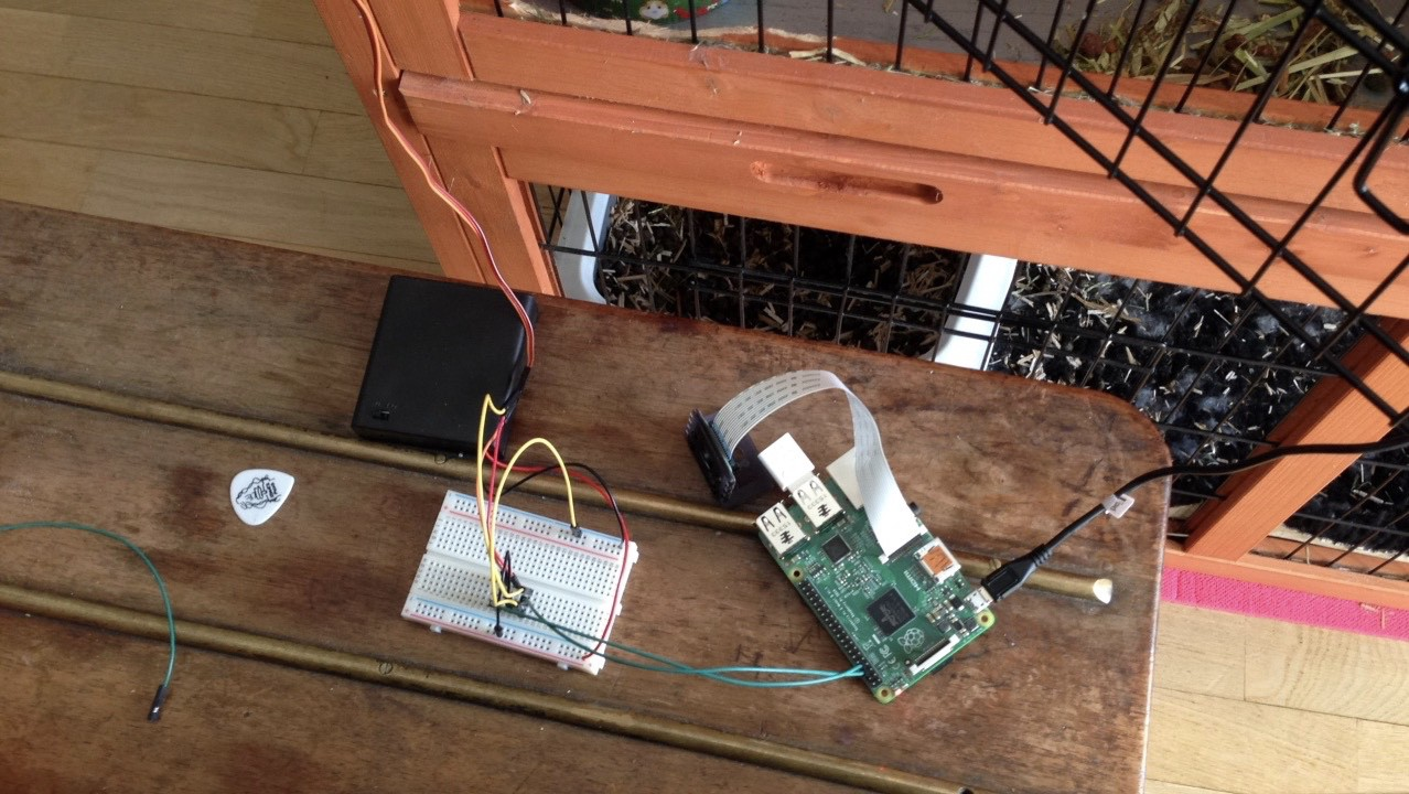 Build A Connected Food Dispenser With Raspberry Pi Hacker Noon Wiringpi Servo We Are All Geared Up To Plug In Everything And Start Coding Our First Python Script Activate The Motor Lets Correctly By