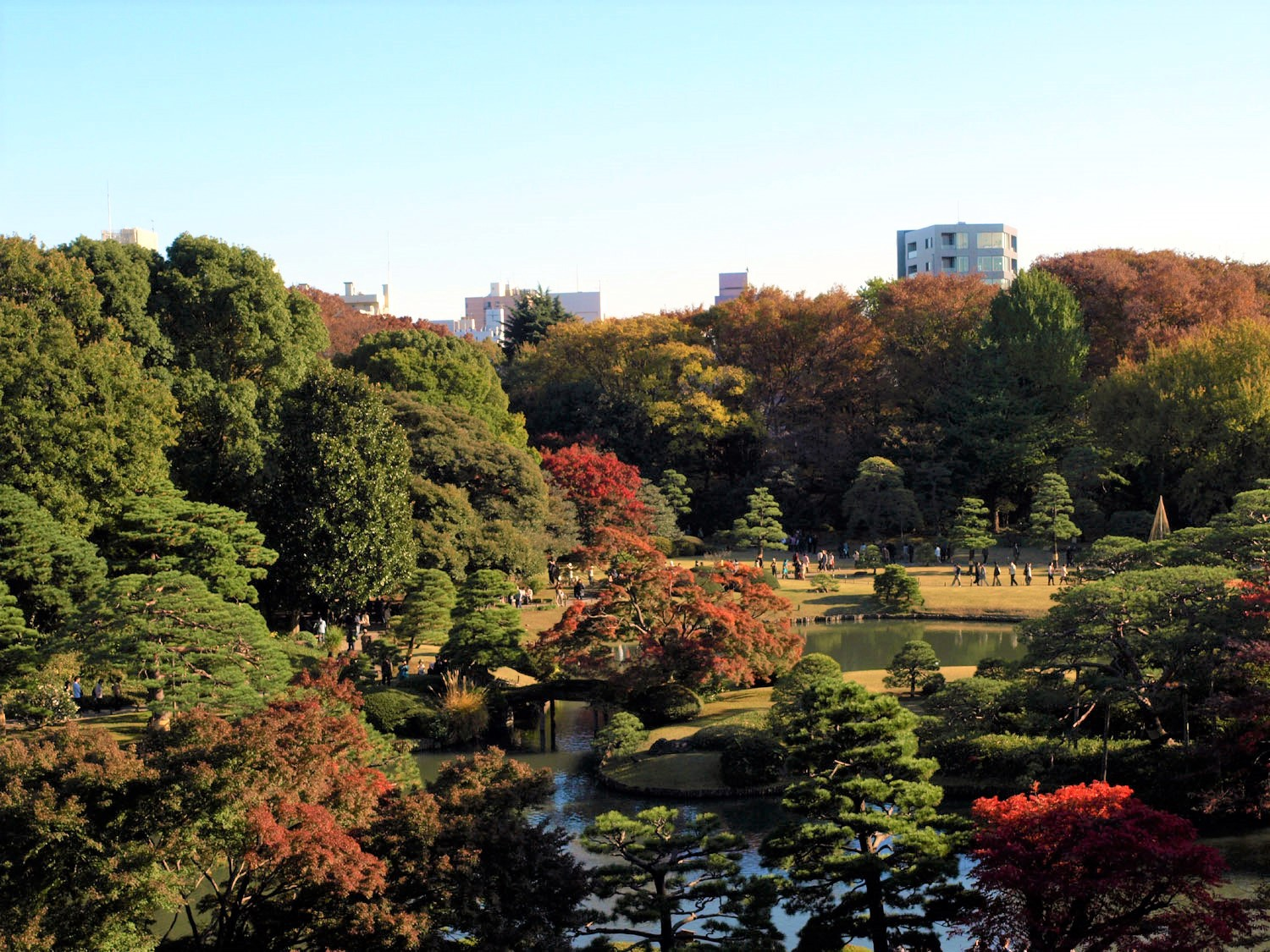 7 Most Gorgeous Japanese Gardens in Tokyo – Japan Travel Guide -JW ...