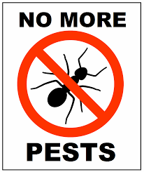 Image result for no more pests