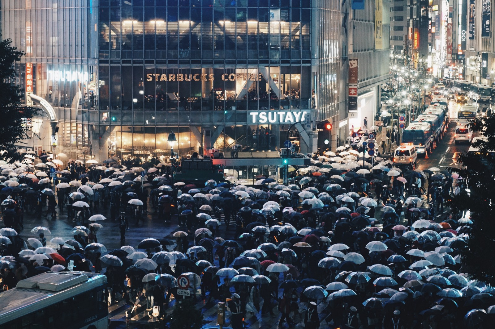 Things to Do during Rainy Season in Japan – Japan Travel Guide -JW ...