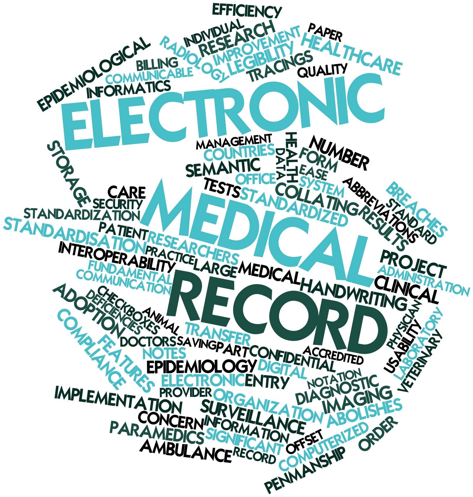 Selecting And Implementing An Electronic Health Record E H R In