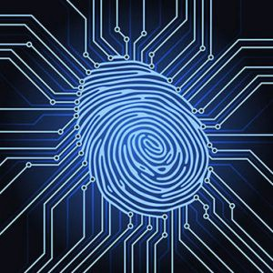 The bustling Fintech industry needs robust Digital Identity Systems