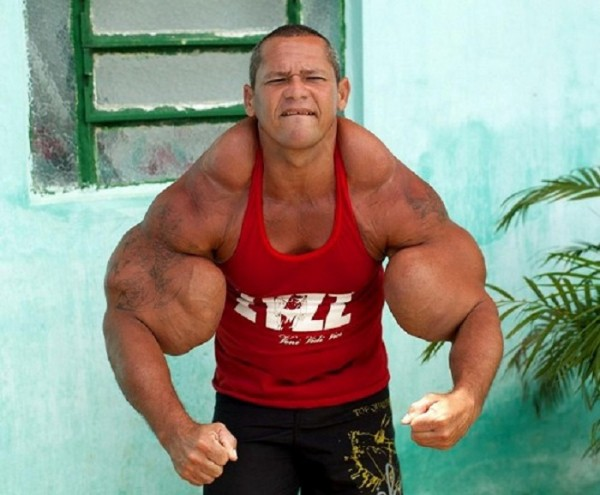 Good Synthol Arms – Home Exsplore