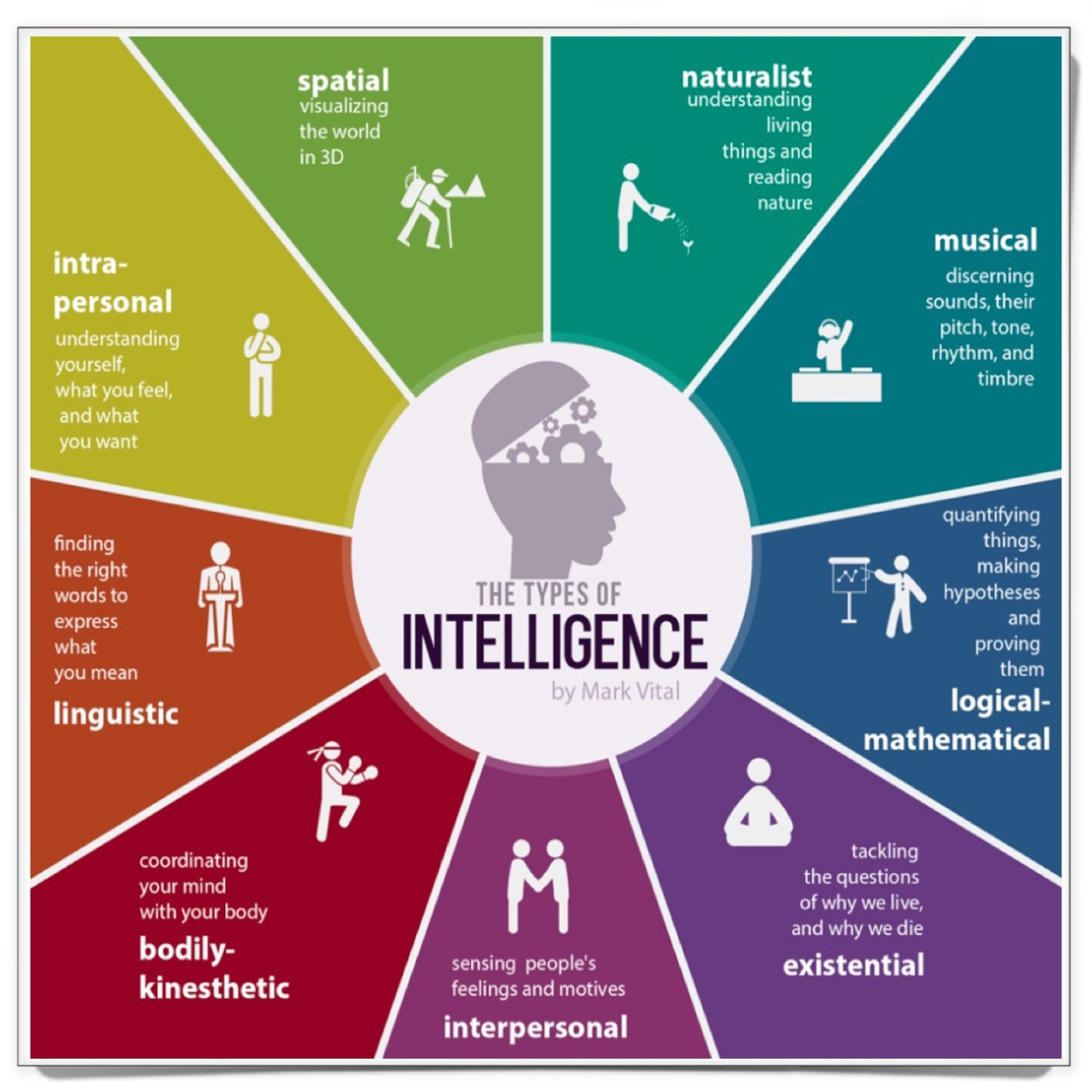 Multiple intelligence test for adult with