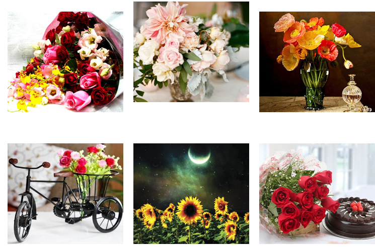 Types Of Bouquet Filler Flowers — Use The Information While Creating ...