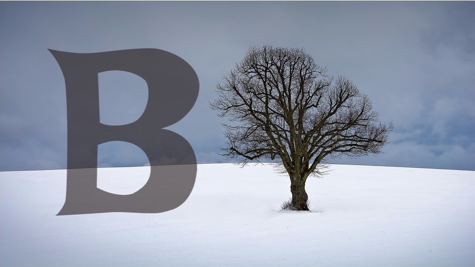 How Database B-tree Indexing works