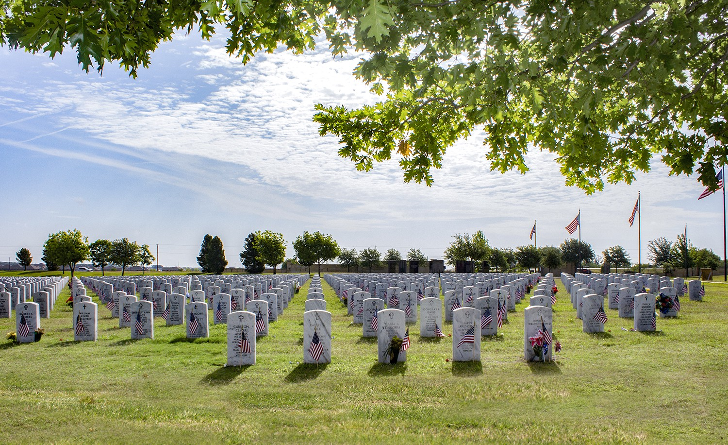 How to get land plots for war veterans
