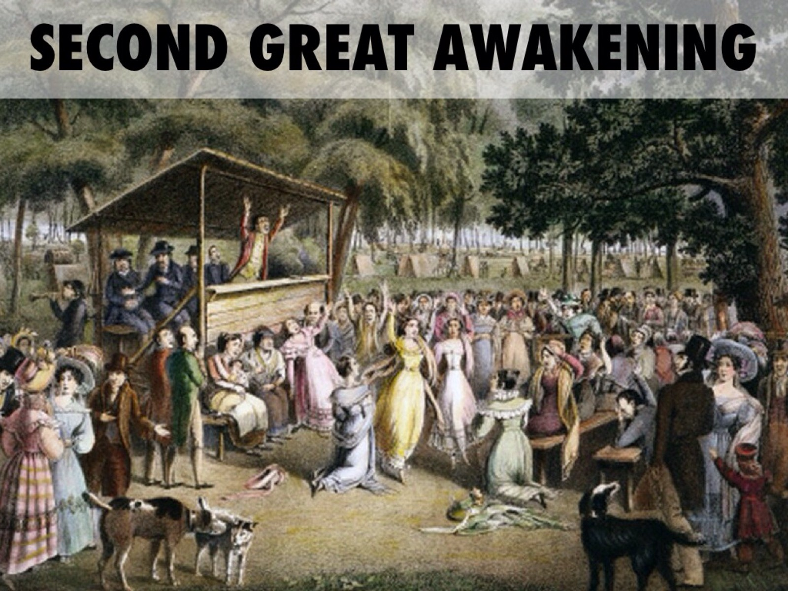 the role of the great awakening in the american revolution Essay on effects of the great awakening by viktoriya_kuz.
