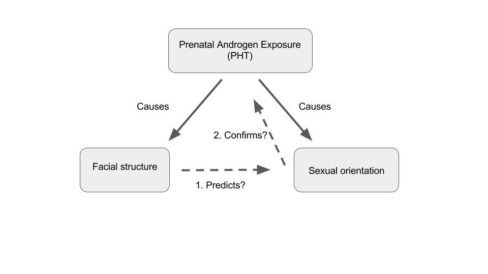 Sexual exposure chart explanation