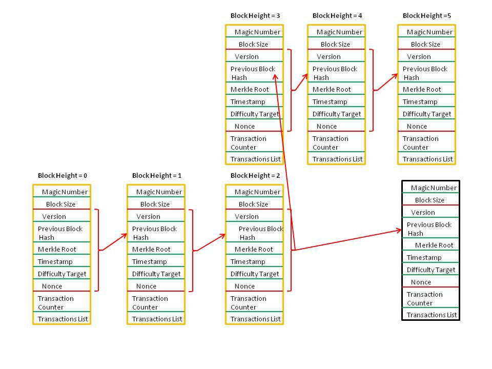 Fields From Version To Nonce Form The Block Header Each Has Hash Of Previous