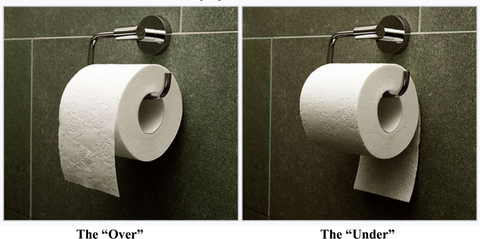 However This Is Actually A Very Well Studied Question And Its Worth Taking The Time To Explore World Of Toilet Paper Orientation