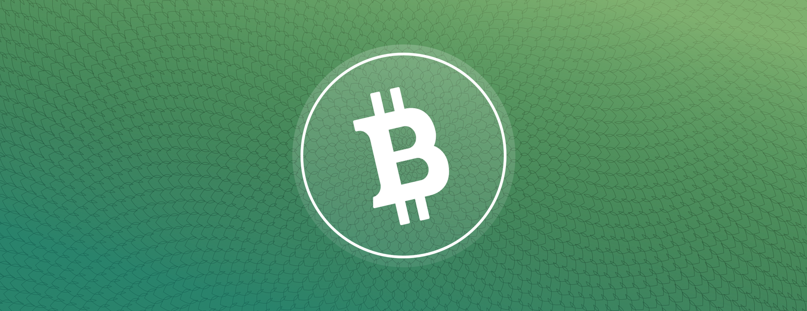 Buy sell send and receive bitcoin cash on coinbase ccuart Image collections