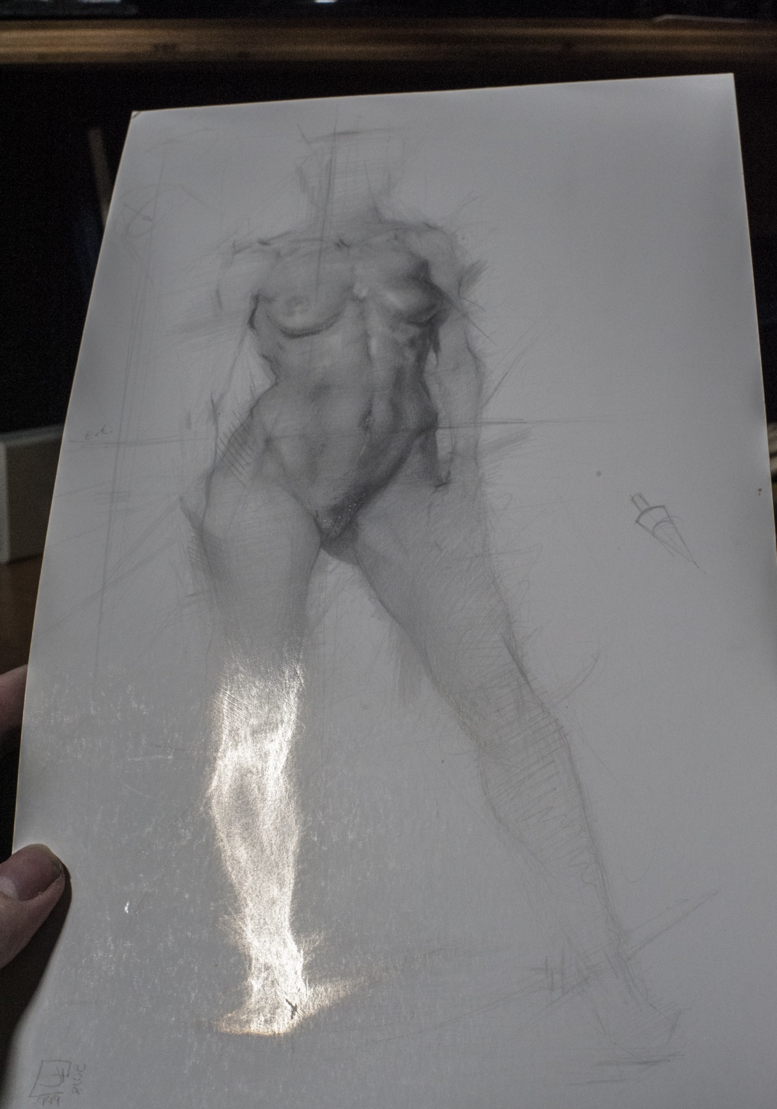 Silverpoint drawing by joshua henderson