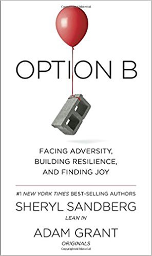 Chapter Review Of Book Option B Facing Adversity Building
