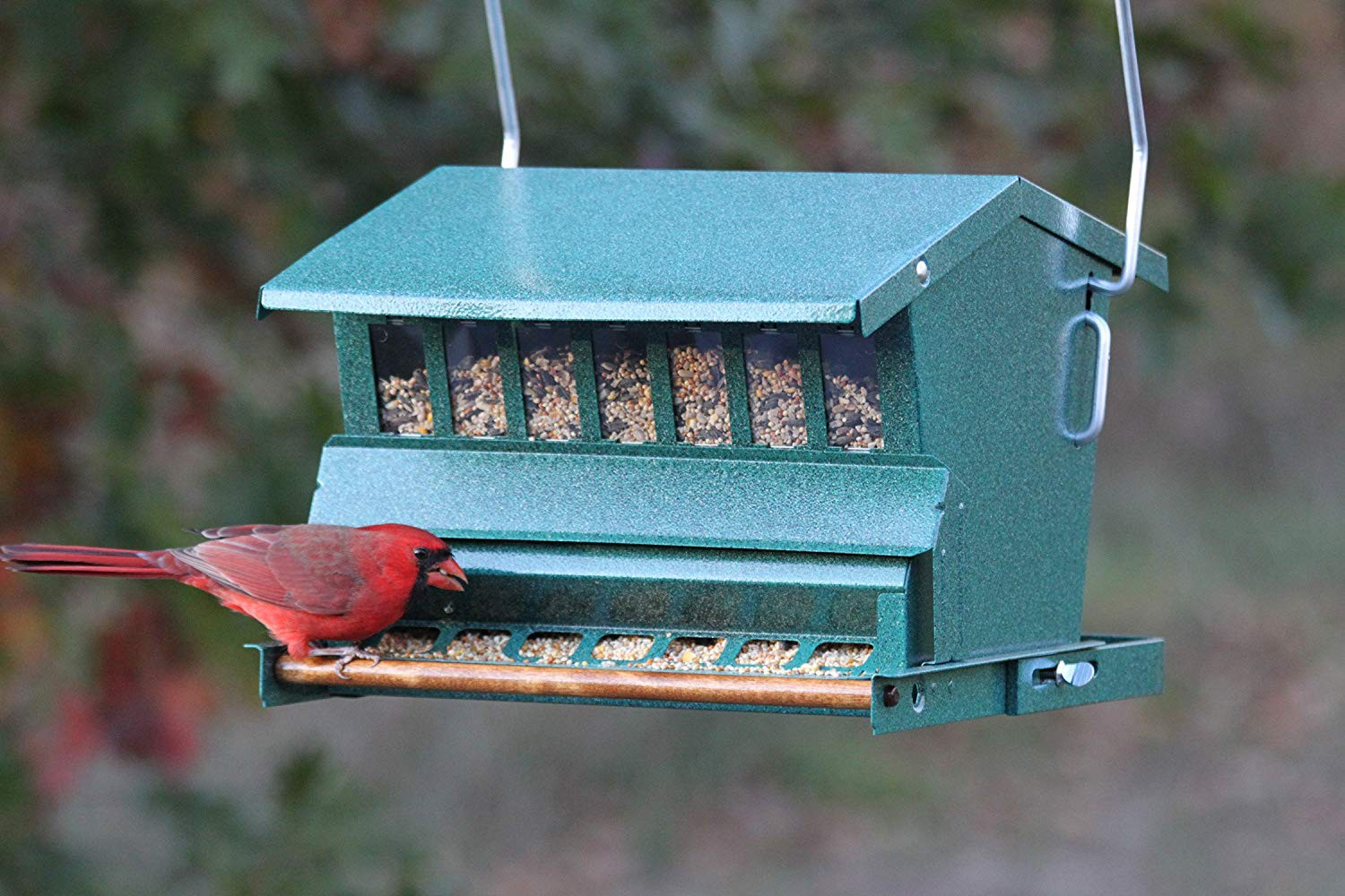 Lovely If You Have Been Looking For A Bird Feeder That Is Squirrel Proof And Have  Not Been Able To Find It, This Article Is Just What You Need.