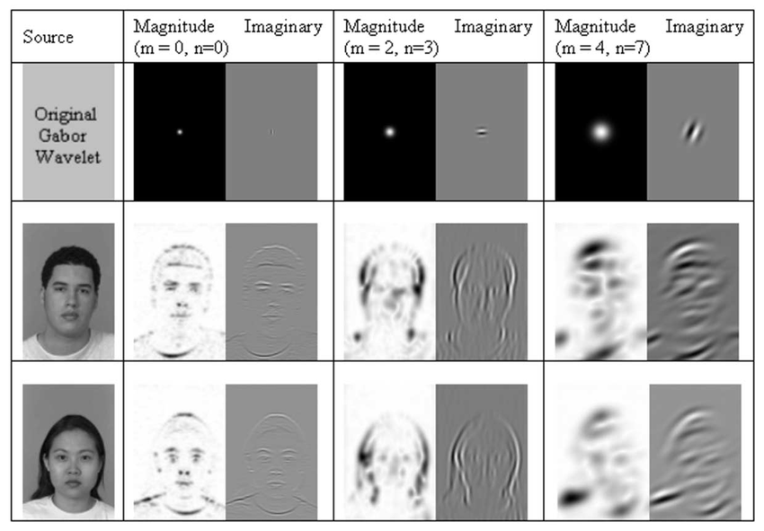 face recognition by independent component analysis pdf