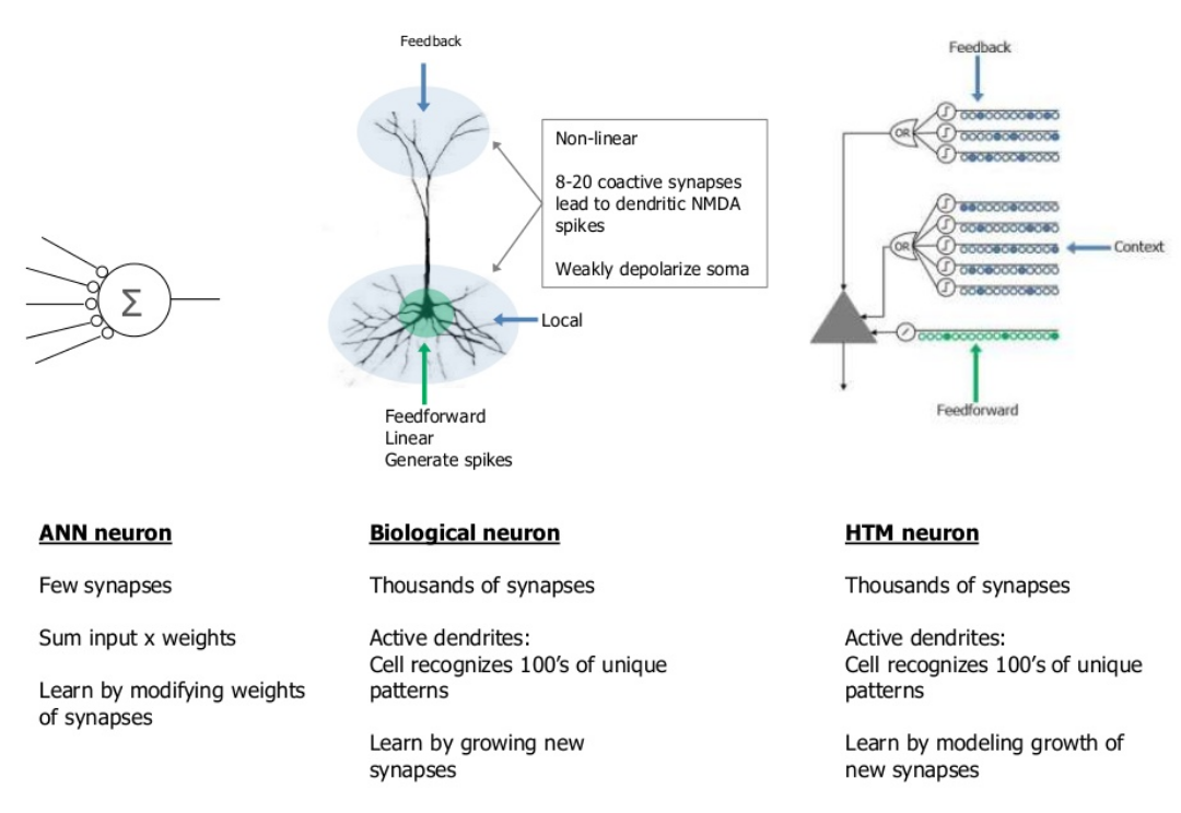 Surprise neurons are now more complex than we thought httpsslidesharenumentarealtime streaming data analysis with htm ccuart Image collections