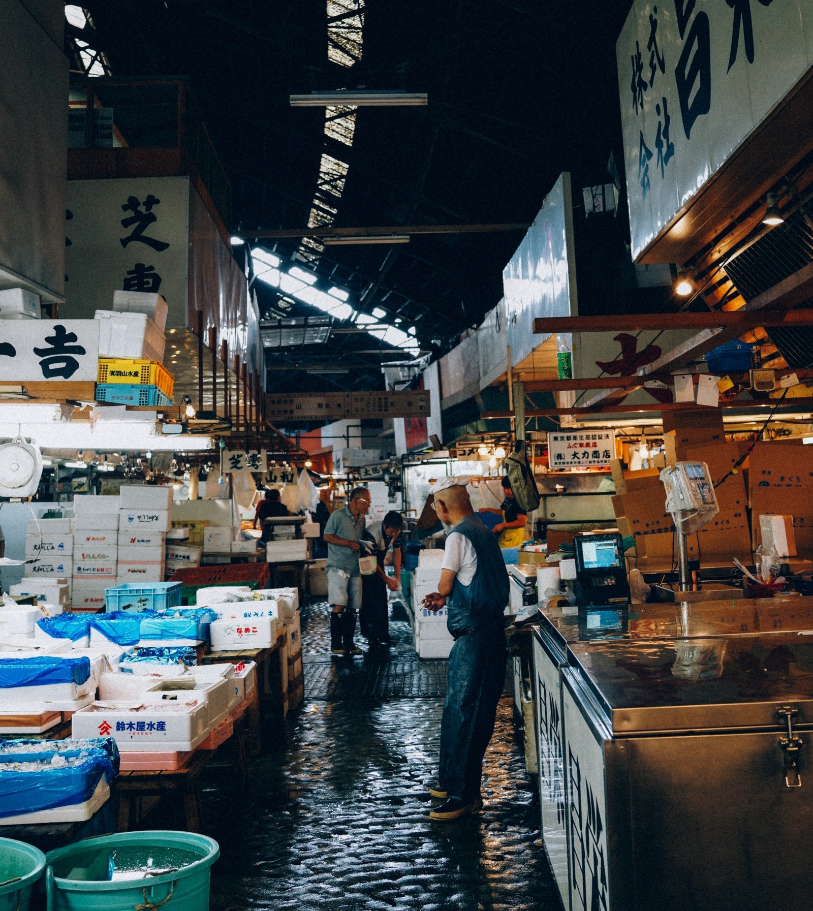 Notes from japan maxistentialism blog medium for Your inner fish sparknotes