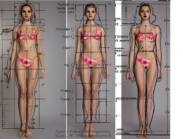 Female Anatomy Models — Educating Women About Their Bodies