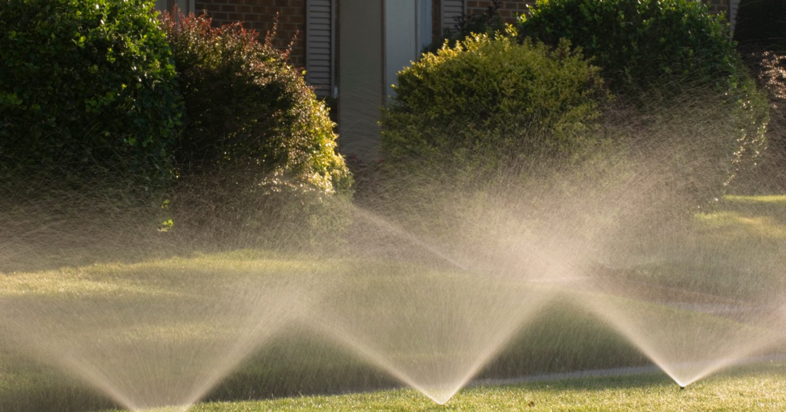 Reasons Why Homeowners With Irrigation Systems on Their Gardens Seem ...