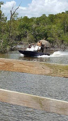 Reasons to Take Airboat Rides While Exploring the Waters of