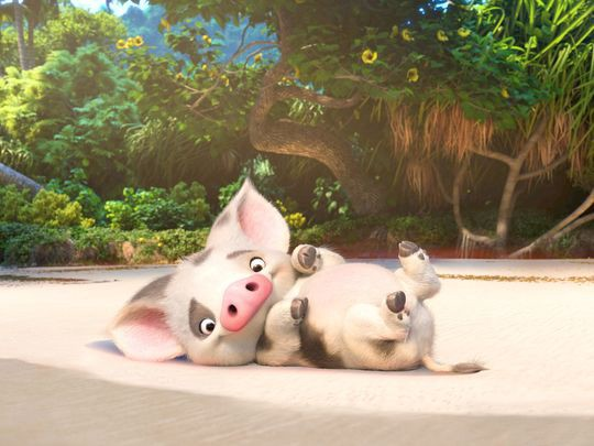 why the pig in moana stayed behind 9 conspiracy theories