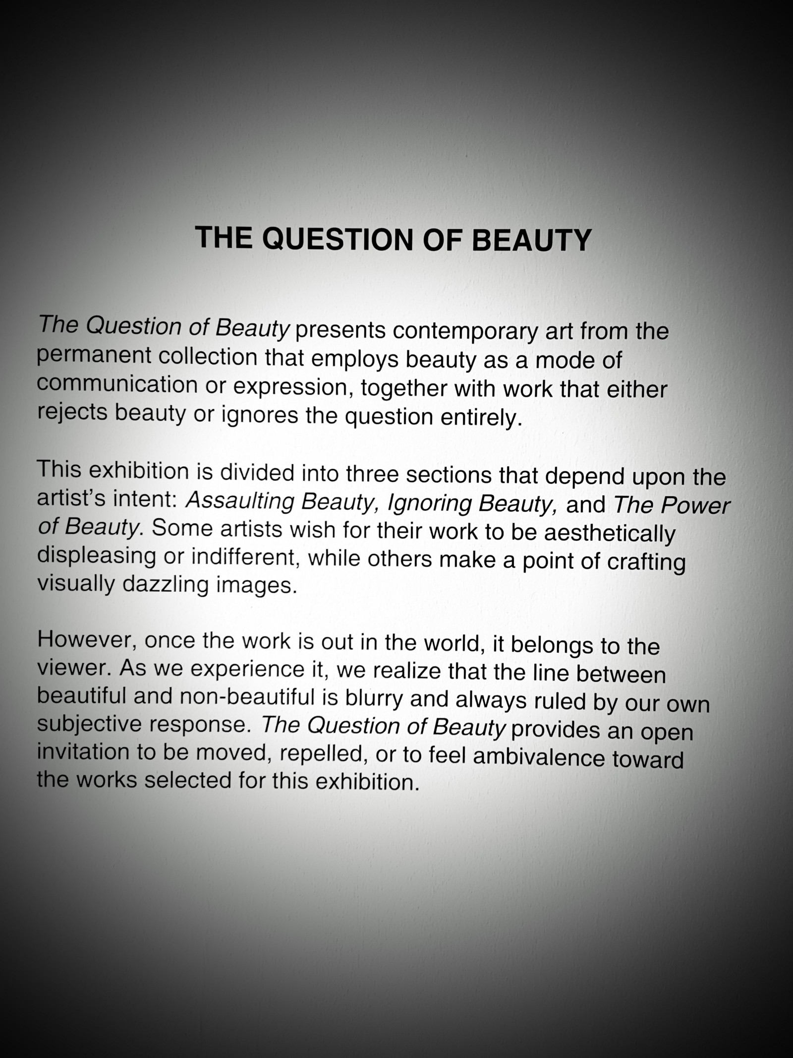 paragraph on beauty