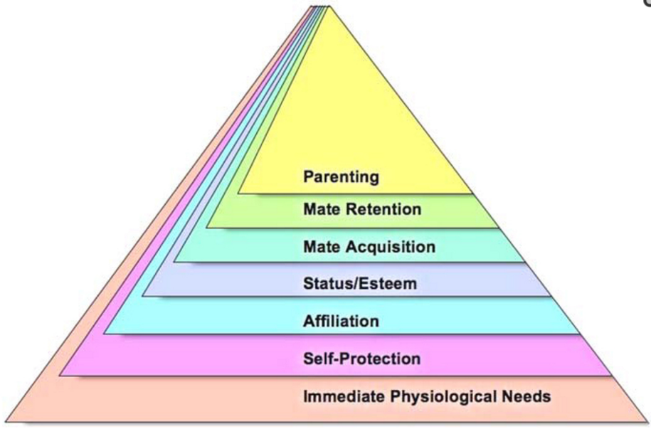 Basic needs pragmatic life medium while the bottom of the pyramid remained intact in more or less the same state self actualization was removed from the top and replaced by parenting publicscrutiny Images