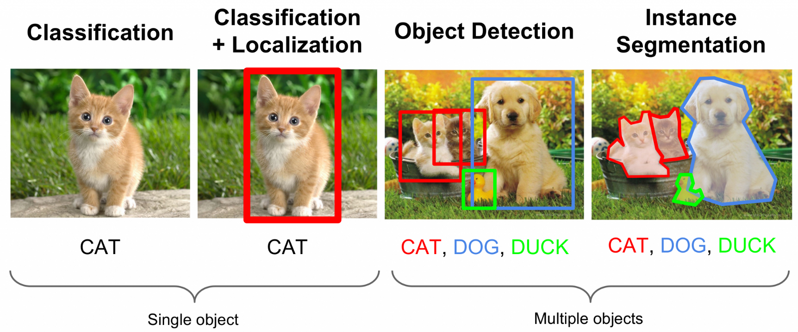 examples of classification, localization , object detection and instance segmentation using cat and dog