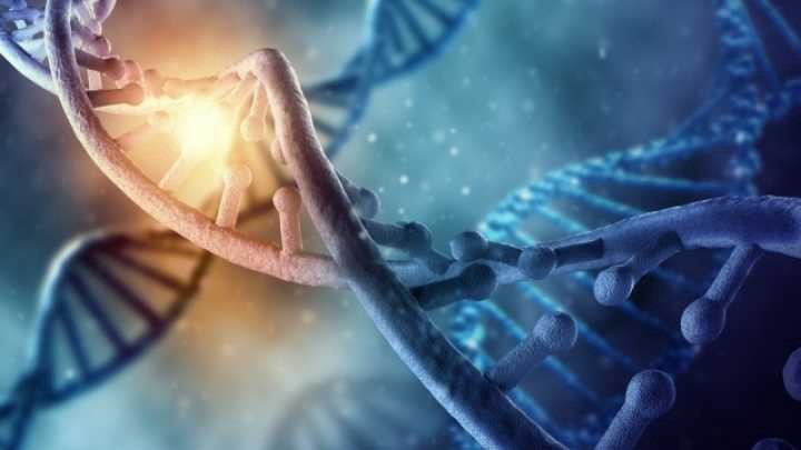 19 PIECES OF NON-HUMAN DNA FOUND IN HUMAN GENOME