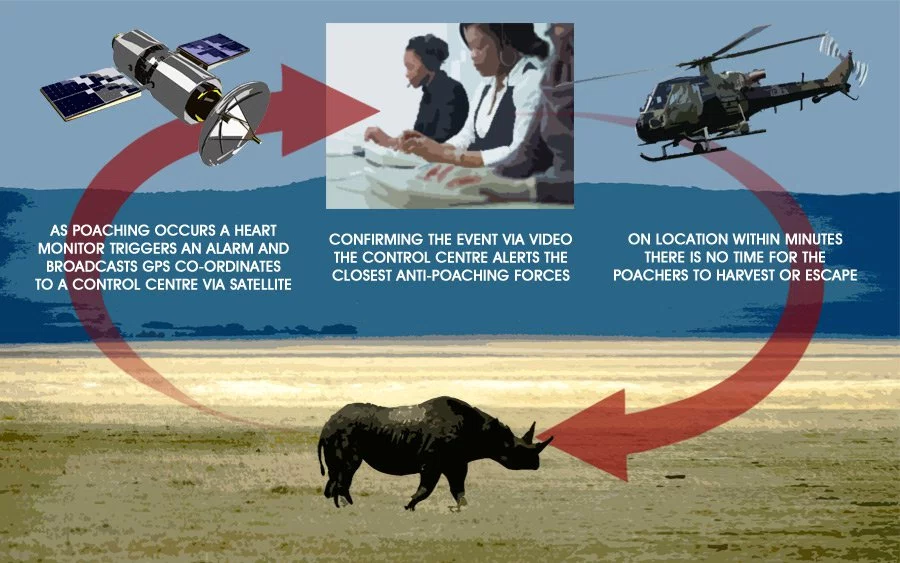Rhino Poaching - Stopped by IoT