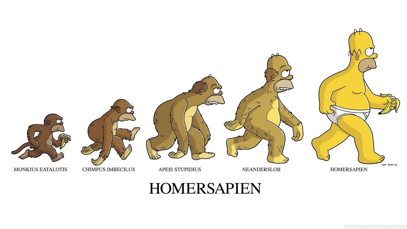 the reasons why darwins theory of evolution is unacceptable by 2030